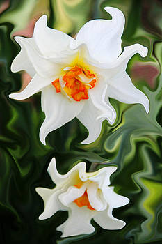 Liquid Narcissus by Mary Burr