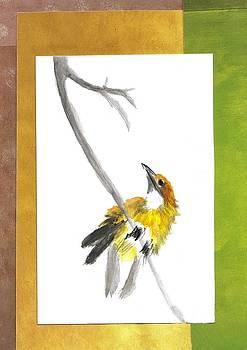 Little Bird by Faye Silliman