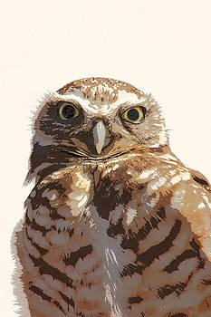 Little Brown Owl by Bob and Jan Shriner