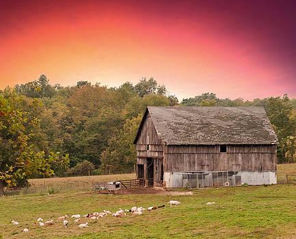 Randall Branham - Little Goat Farm