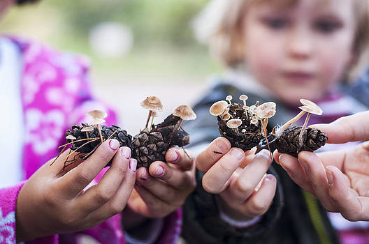 Little people with little fungi by David Isaacson