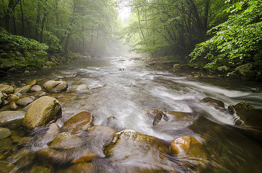 Little Pigeon River Great Smoky Mountains National Park TN  by Robert Stephens