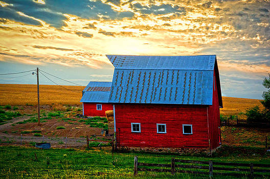 Randall Branham - Little Red Barn farm