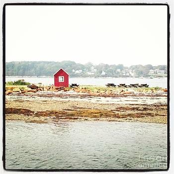 Little Red Hut by Christy Bruna
