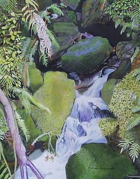 Small Waterfall by Constance DRESCHER