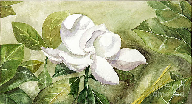 Lively Magnolia by Gracie Hampton