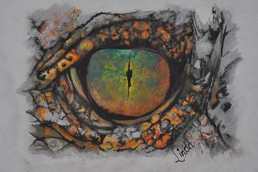 Lizards eye by Linda Ferreira
