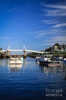 Lizzie and The Footbridge by Belinda Dodd