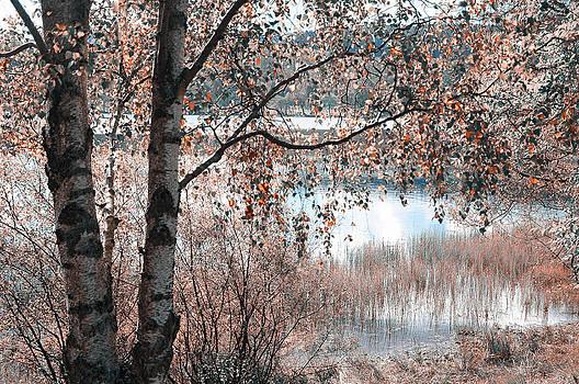 Jenny Rainbow - Loch Achray. Nature in Alien Skin
