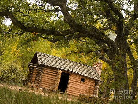 Log Cabin by Cynthia Holling-Morris