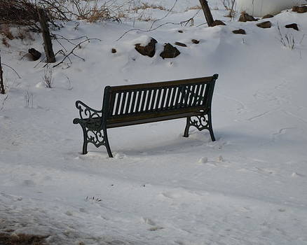Lone Bench by Jenna Mengersen