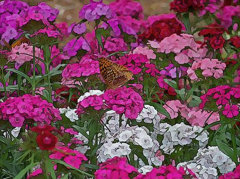 Lone Butterfly by Julie Grace