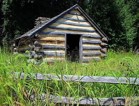 Lone cabin by Debra Kaye McKrill