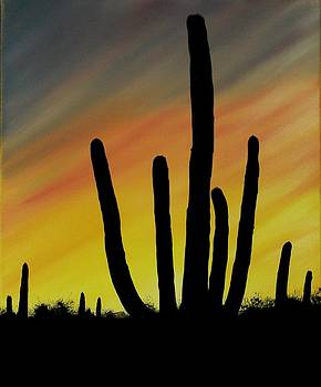 Lone Cactus at Sunset by Aaron Thomas