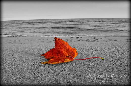 Lone Leaf by Terri K Designs