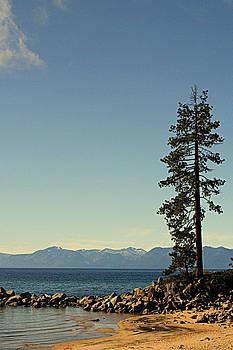 Lynn Bawden - Lone Pine