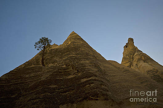 Dave Gordon - Lone Tree and Sandstone Peaks