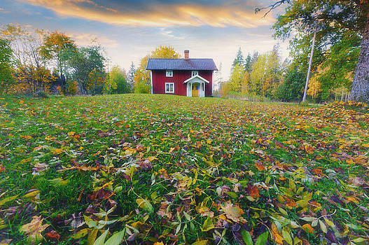 Lonely Red Cottage Surrounded By Autumn Leaves by Christian Lagereek