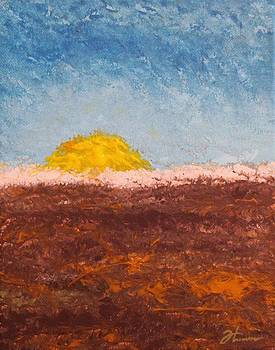 Lonesome Prarie by Todd Hoover