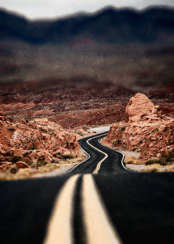 Long and Winding Road by Paul Bartell