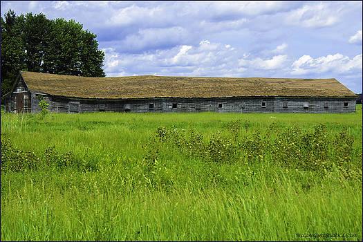 LeeAnn McLaneGoetz McLaneGoetzStudioLLCcom - Long Barn roof sag