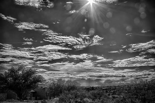Look To The Western Sky by Judi FitzPatrick
