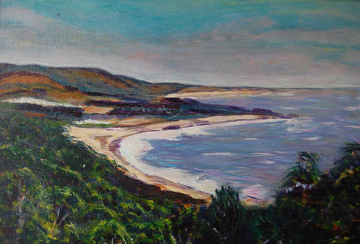 Looking Down on Half Moon Bay by Carolyn Donnell