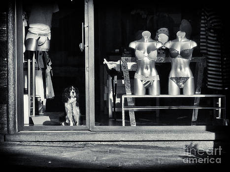 Silvia Ganora - Looking out the shoppe