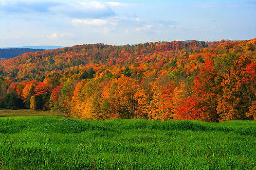 Looking South In The Fall by David Simons