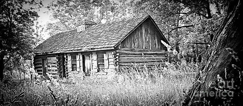 Lost Cabin by Shannon Beck-Coatney
