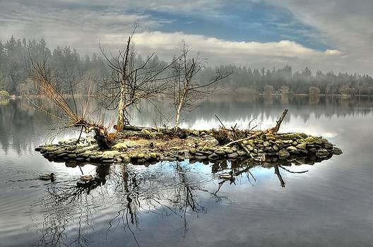 Lost Lagoon Micro Island by Doug Farmer
