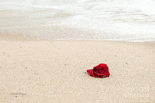 Lost Love by Michelle Wiarda