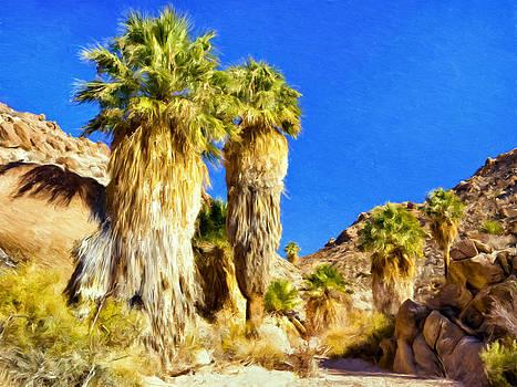 Dominic Piperata - Lost Oasis Trail