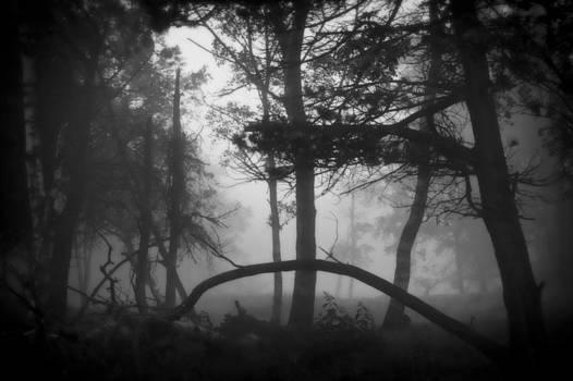 Lost by Odd Jeppesen