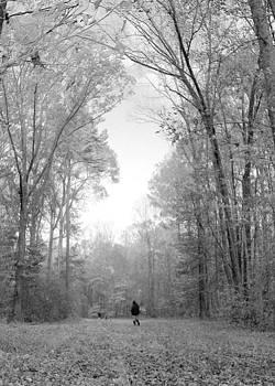 Lost by Shayne Johnson Fleming