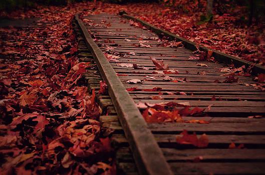 Lost Tracks by Studio Yuki