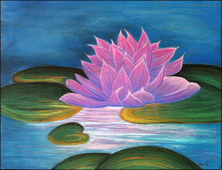 Lotus in the lake by Beril Sirmacek