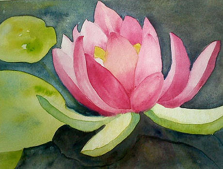 Lotus Reflection by Sheba Goldstein