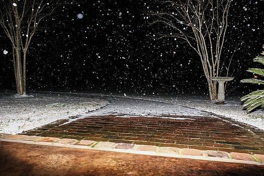 Louisiana Winter by Hannah Miller