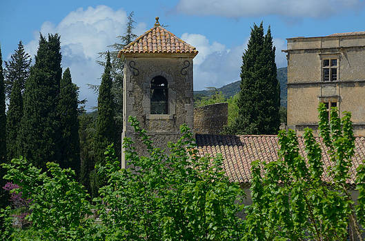 Lourmarin Castle in Provence by Dany Lison