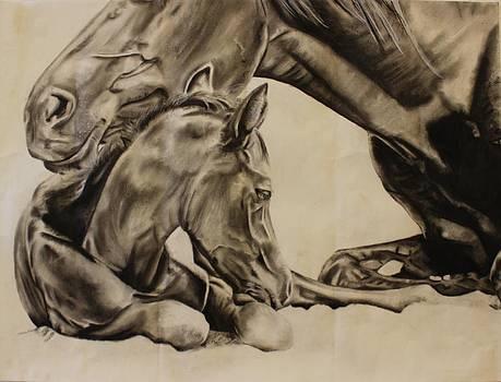 Love by Albane Devalet