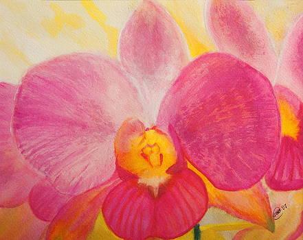 Love in Bloom by Anne Kibbe