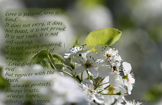 Love is by Sybil Conley