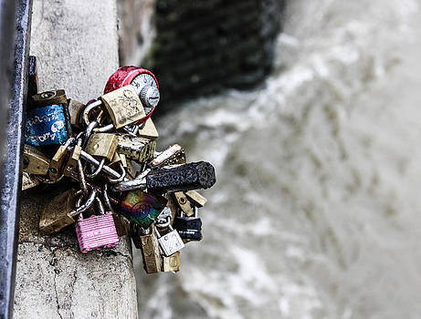 Love Locks  by Steven  Taylor