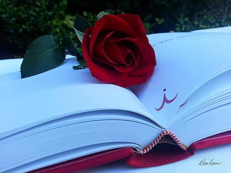 Diana Haronis - Love Story