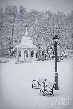 Evelina Kremsdorf - Love Through The Winter