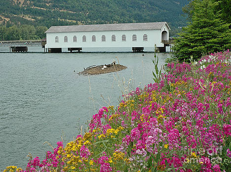 Lowell Covered Bridge by Nick  Boren