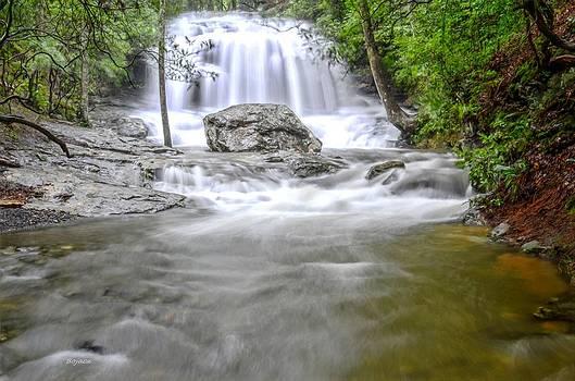 Lower Disharoon Falls by Bob Jackson