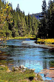 Lynn Bawden - Lower Truckee River