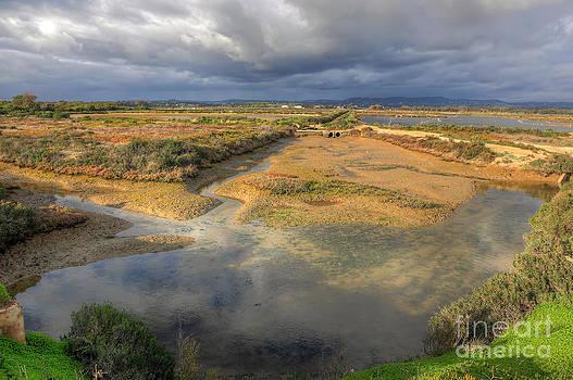 English Landscapes - Ludo Nature Reserve